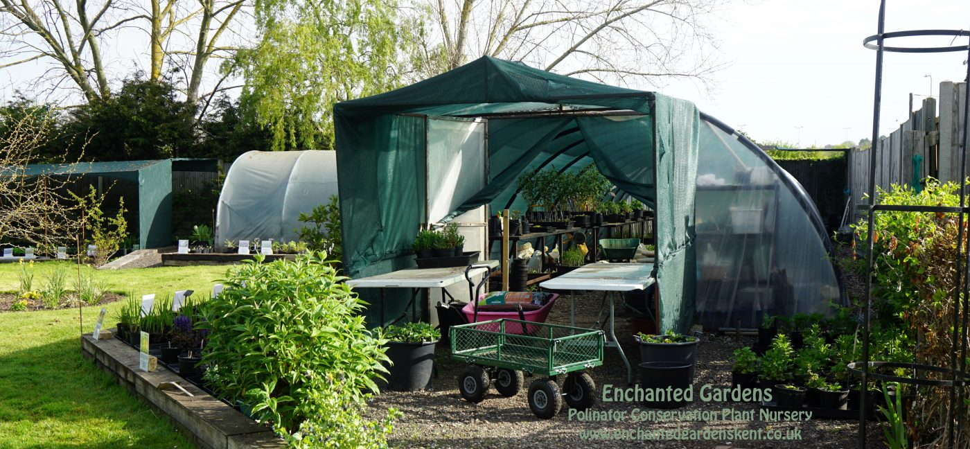 Open Day at Enchanted Gardens on 27th April 2019