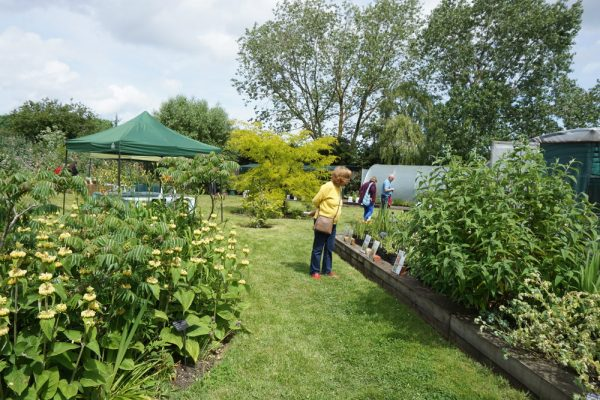 NGS Open Day 8